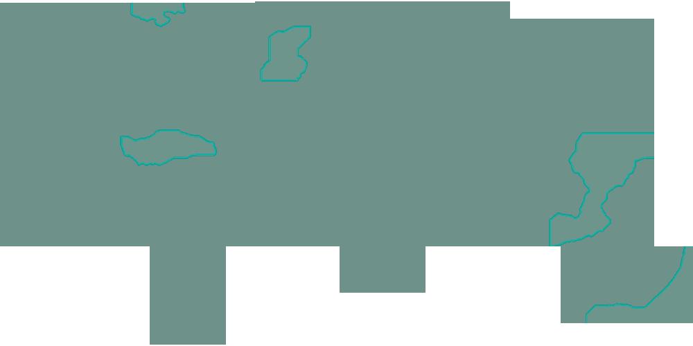 Weltweite Vertriebspartner für Hämostase in Kliniken