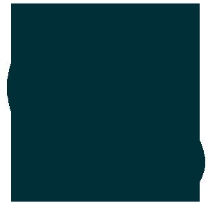 Drehzahl-Icon